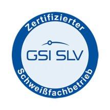 gsi-slv-logo-430.jpg